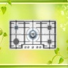 2011 New Style Built-in Gas Hob NY-QM5013