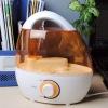 2011new mini air humidifier GX-106G