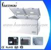 600 Double Door Cold Defrost Freezer BD-600 for Asia