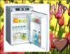60G ammnia refrigerator for small caravan gas fridge