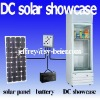 DC 12V/24V showcase 208L