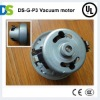 DS-G-P3 dry vacuum cleaner motor