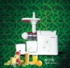 Single Gear Slow Juicer Extractor (TK-Z01)