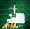 Slow speed juicer extractor (TK-Z01)
