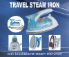 Travel Steamer with Brush Dual Voltages