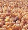 soapnuts shell powder