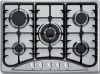 stainless steel gas cooker (WG-IT5025)