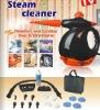 steam cleaner high pressure