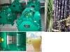 sugarcane juice extractor (freestanding model )  008615238020686