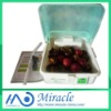 vegetable &fruit disinfect machine
